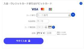 TheOption(ザオプション)入金方法クレジット入力画面